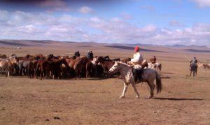 Birgit Podelsky in Mongolia