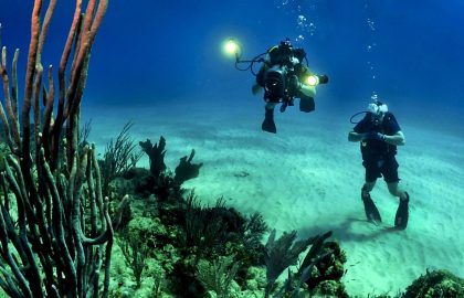 SCUBA Diving and Conservation Course in the Philippines
