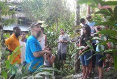 Tropical Agroforestry Internship in Belize