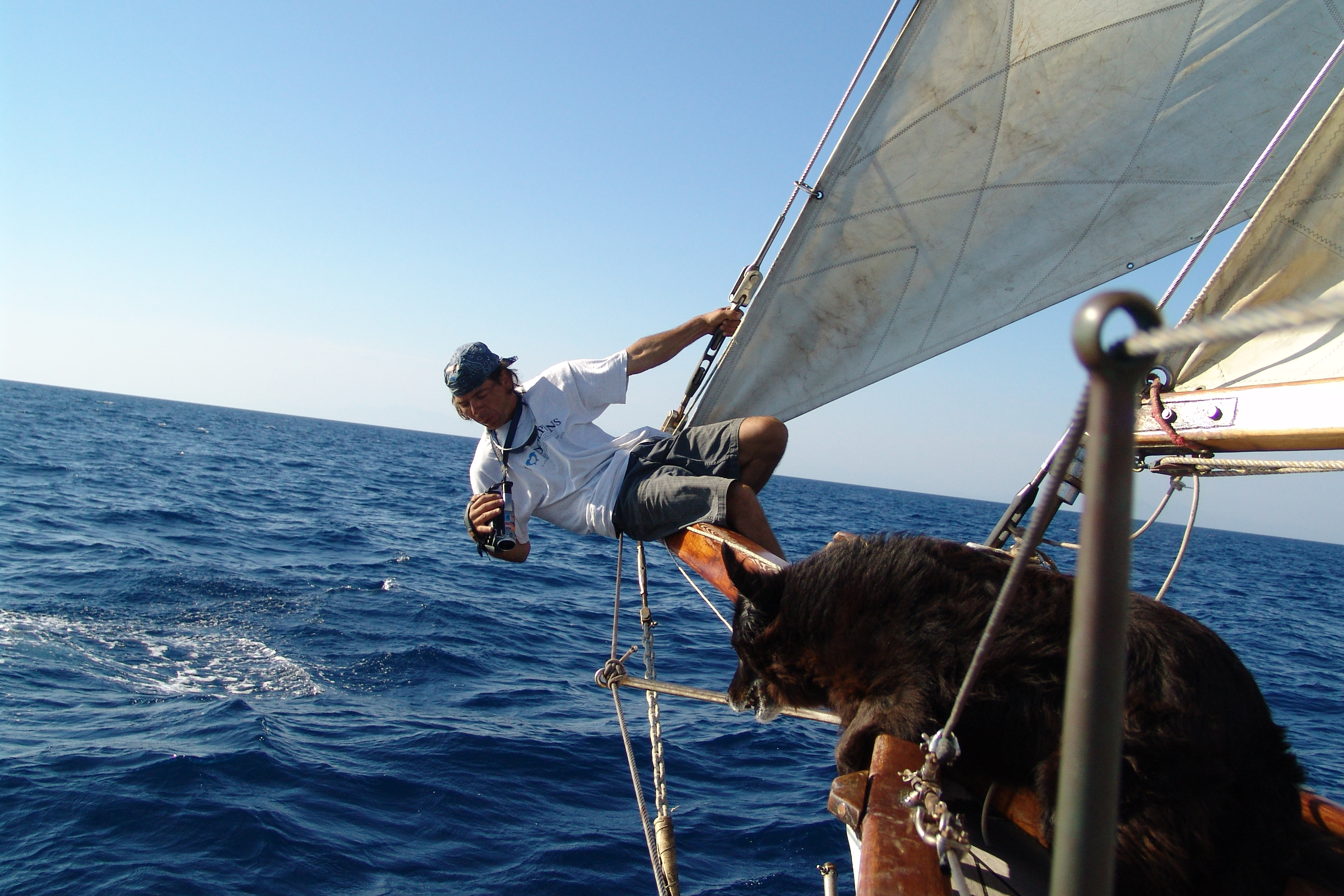 Marine Biology Course in Italy | Global Nomadic