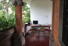 Bali-conservation-internship-accommodation-3