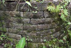 Ancient Maya wall close to the project