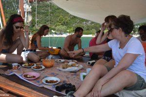 Dolphin research internship in Greece
