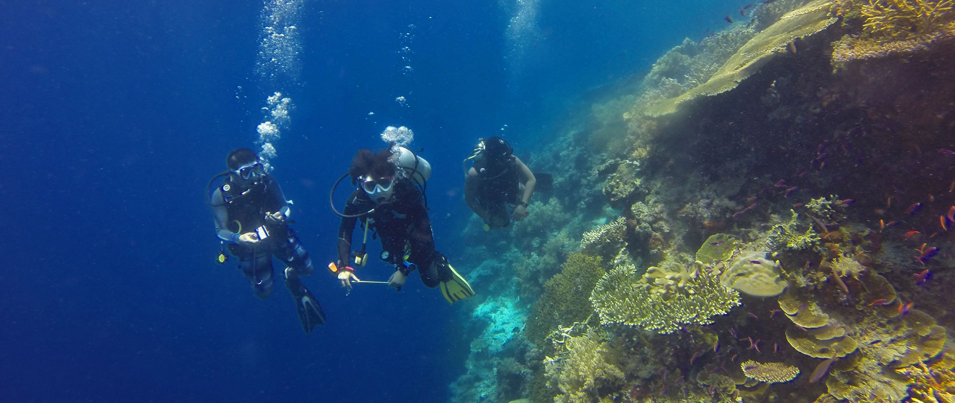 marine conservation thailand