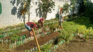 environmental volunteer
