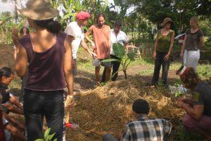 Environmental Internship in Bali