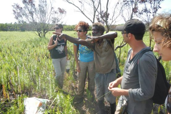Wildlife rehab in Honduras