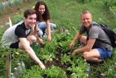 Tim Dean – Urban Environmental Volunteer Program in Brazil