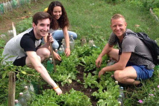 Tim Dean – Urban Environmental Volunteer Program in Brazil
