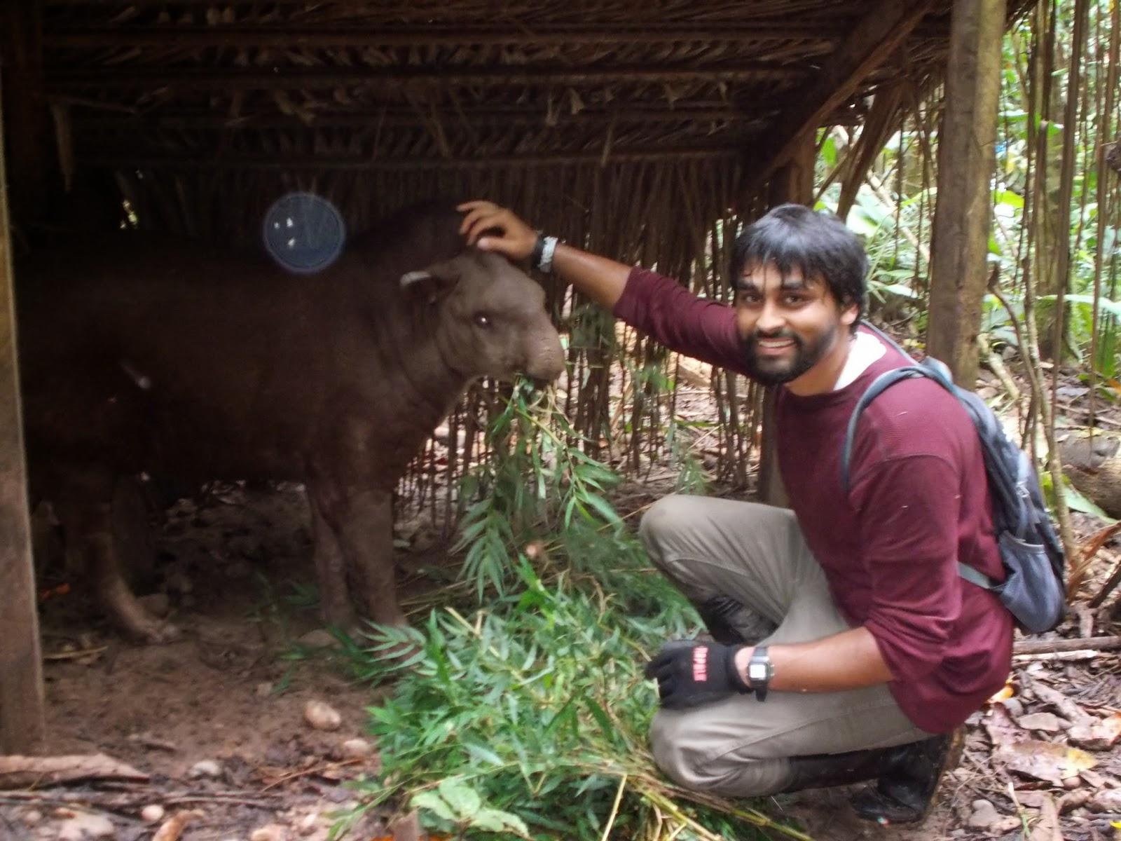 Rick Gurinder - Wildlife Rehabilitation in Peru