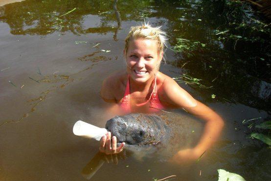 Tara Hamlin – Manatee Rehabilitation in Belize