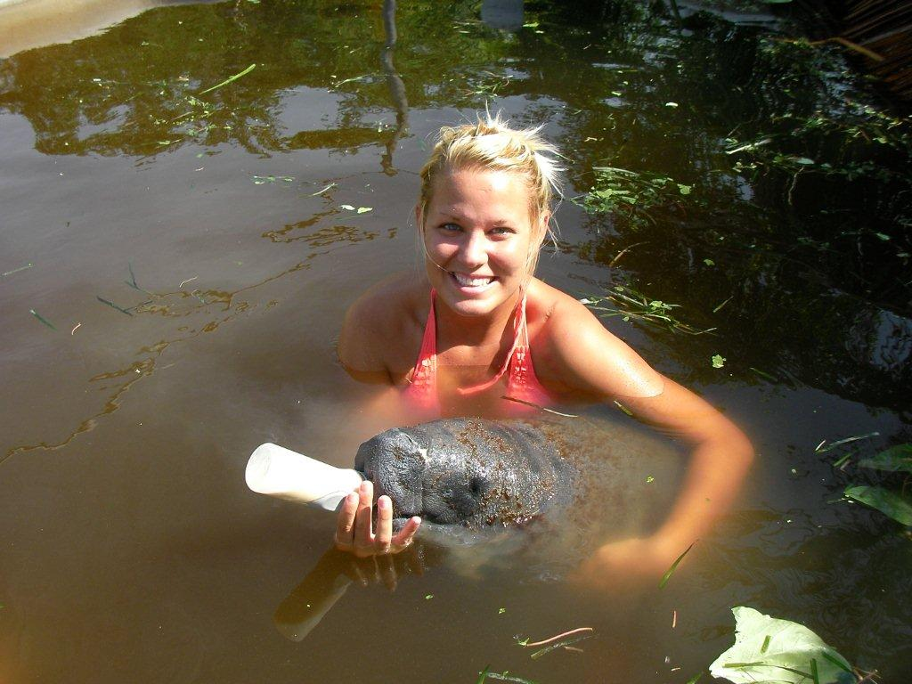 Tara Hamlin – Manatee Rehabilitation in Belize