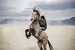 Internships in Mongolia
