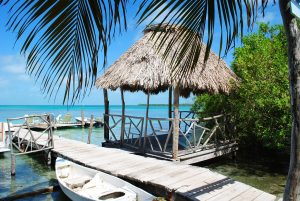 internships in Belize