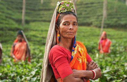 sri-lanka-cultural-week-main-image
