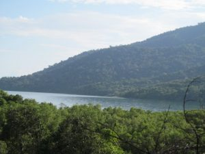 forestry-and-wildlife-conservation in Madagascar