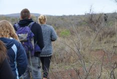 Swaziland Savannah Conservation
