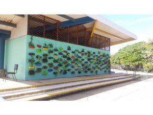 Marine Park Vet Project