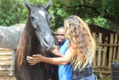 Equine Therapy Tobago