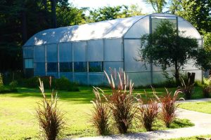 Environmental Community Development argentina