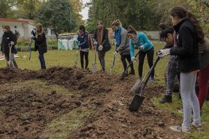 Environmental Community Development argentina