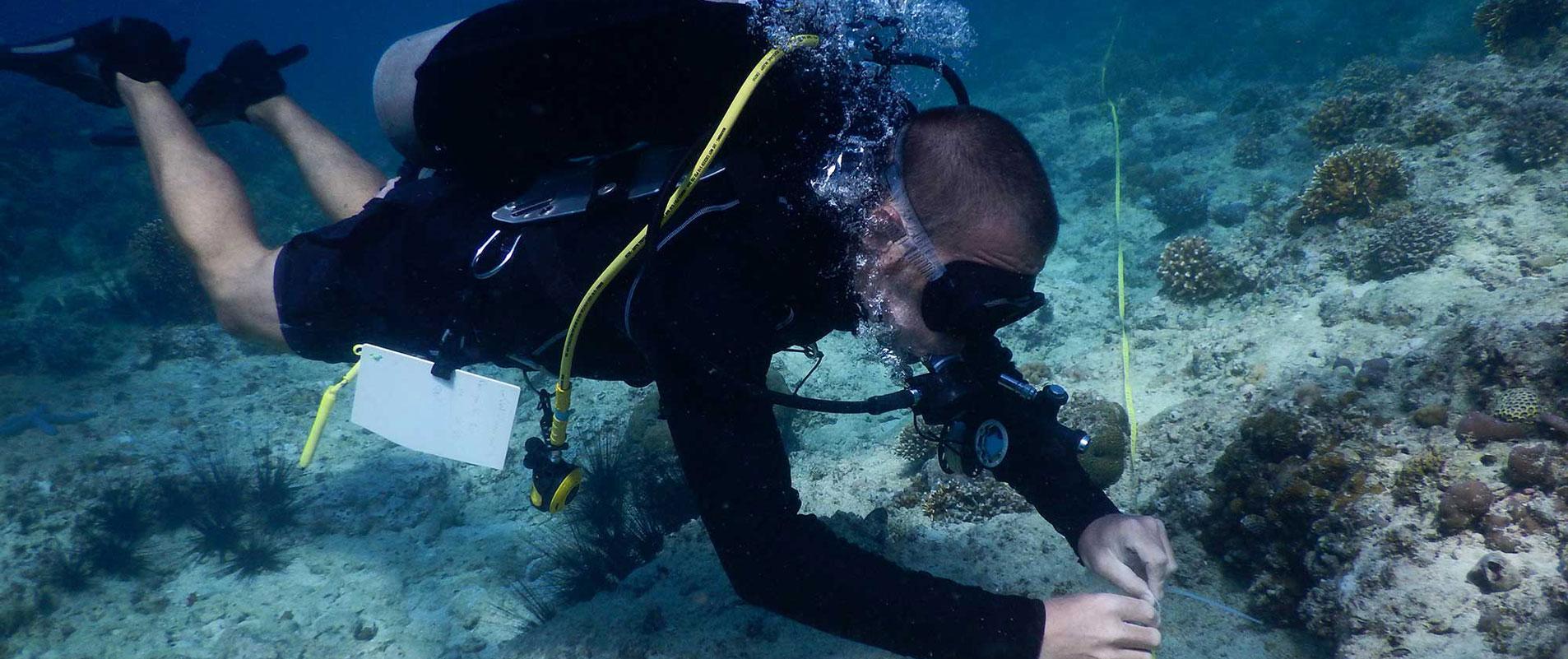 Marine researcher in Philippines