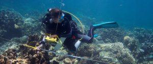 Marine-Conservation-Philippines