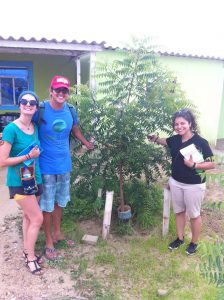 reforestation volunteer in Peru