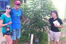 reforestation volunteer in Peru
