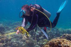 Philippines: Marine Resources Researcher