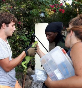 botanical-garden-Internship