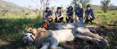 endangered-species-conservation