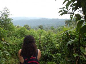 Agroforestry & Environmental Development Internships in Ecuador