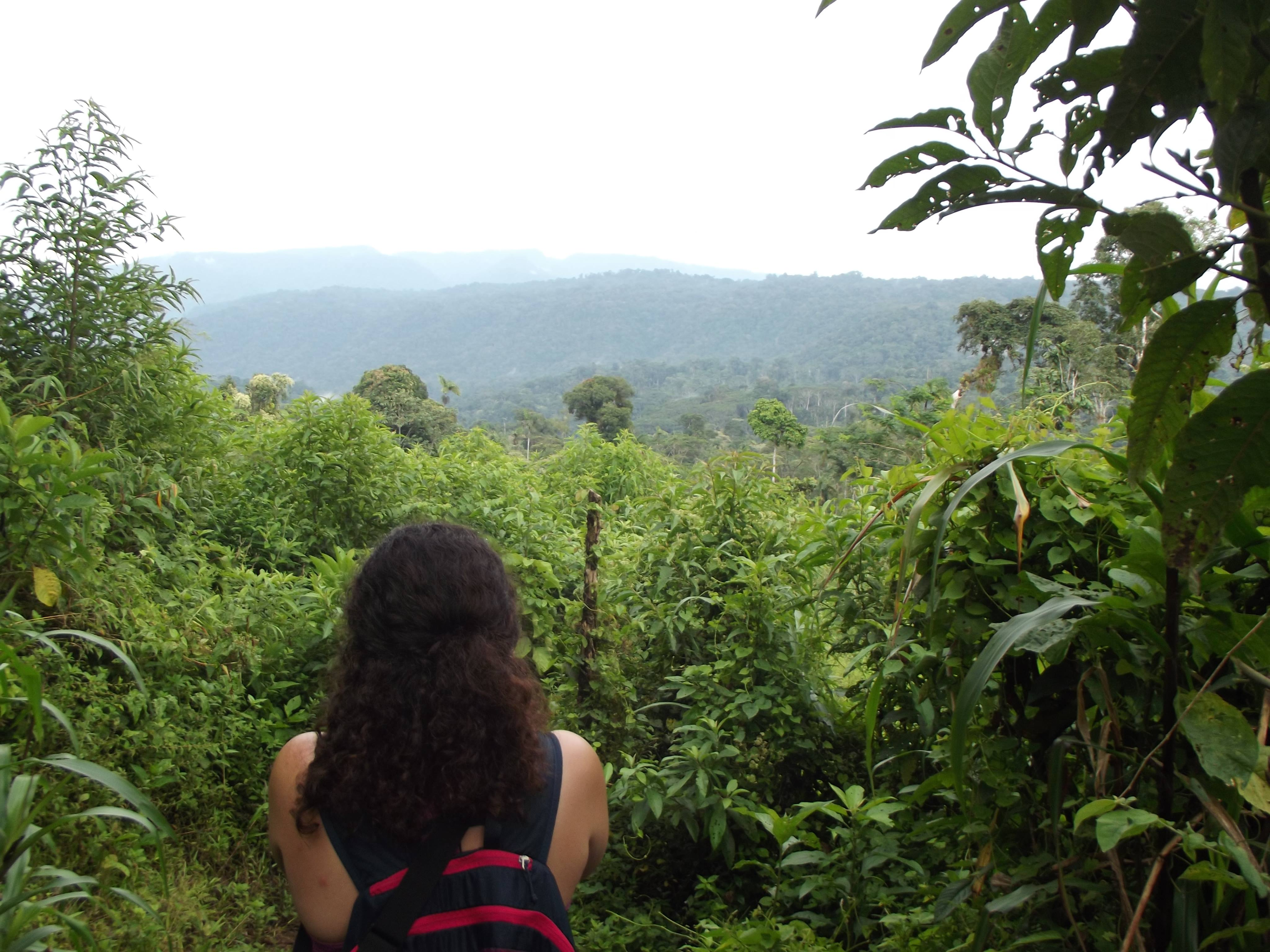 Agroforestry & Environmental Development Internships in Ecuador