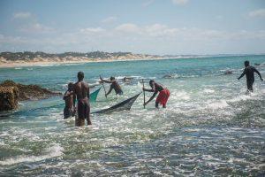 Fishermen bringing in their catch