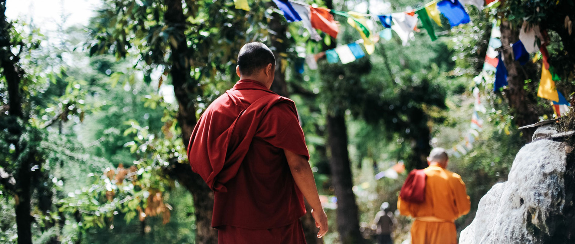 Image result for buddhist monks