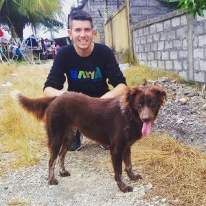 Bali: Canine Care Volunteer Project