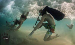 Underwater photography internship in south africa