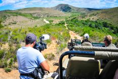 wildlife photography internship in south africa