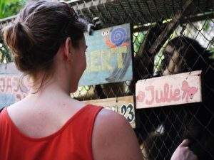 Thailand-Gibbon-Volunteer-project