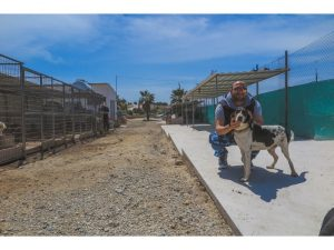 Animal-Rehabilitation-Project-in-Cypress