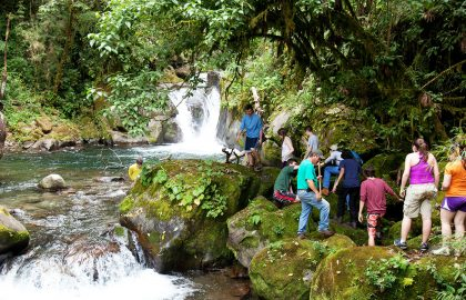 Environmental-Conservation-Internship-in-Costa-Rica