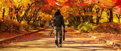 Korea-Photography-Internship-cover