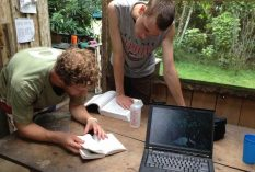 Bird-Research-in-Costa-Rica
