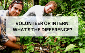 Volunteer or Intern: Whats The Difference?