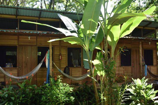 Costa Rica: Environmental Research Internship