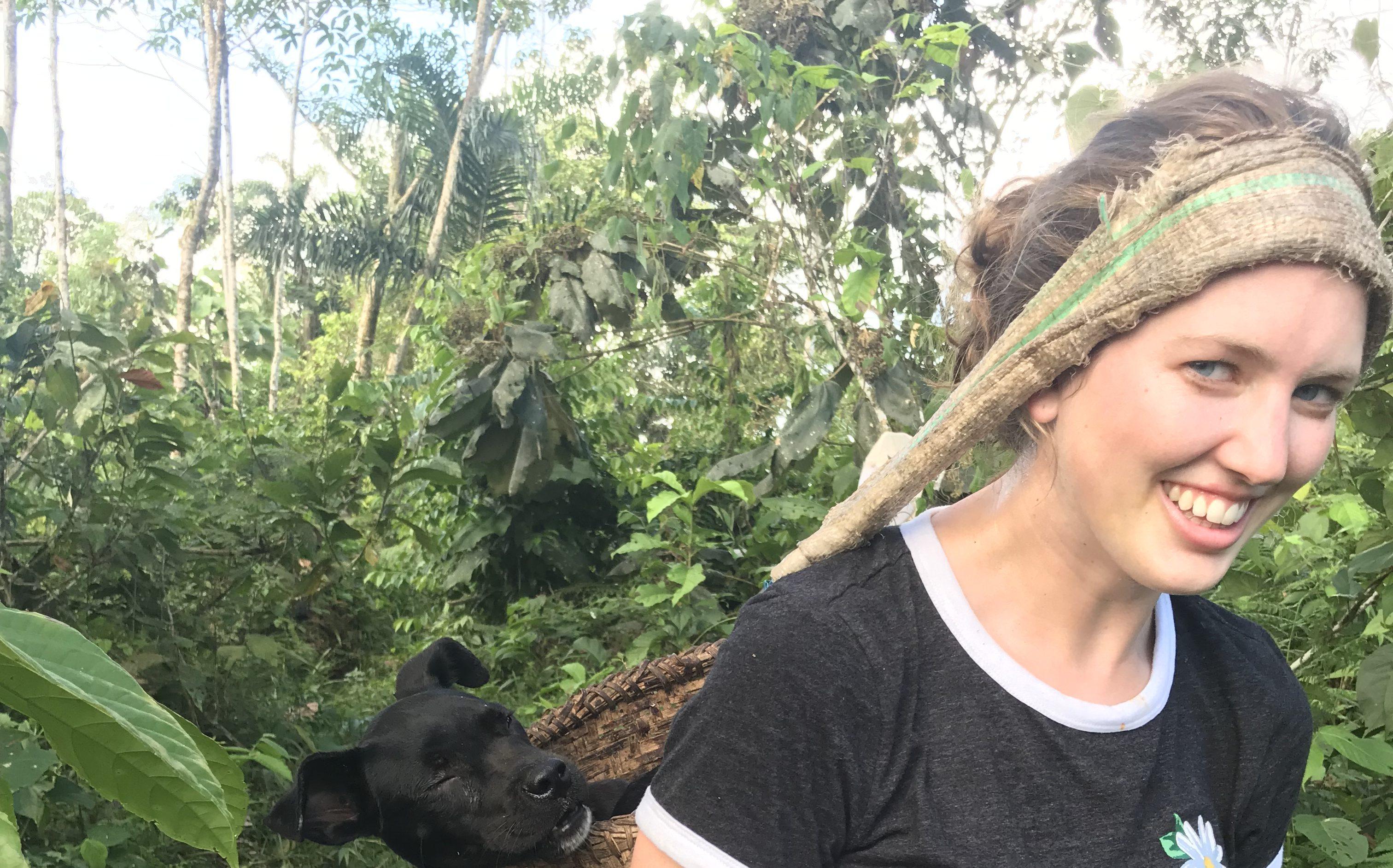 Ecuador: Amazonian Traditional Medicine