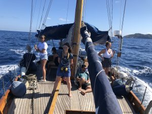 Whale and Dolphin conservation in Italy, volunteer experience