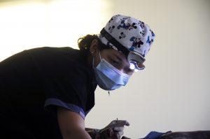 Peru: Medical Electives Internship