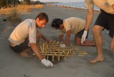 greece-turtle-conservation-volunteer